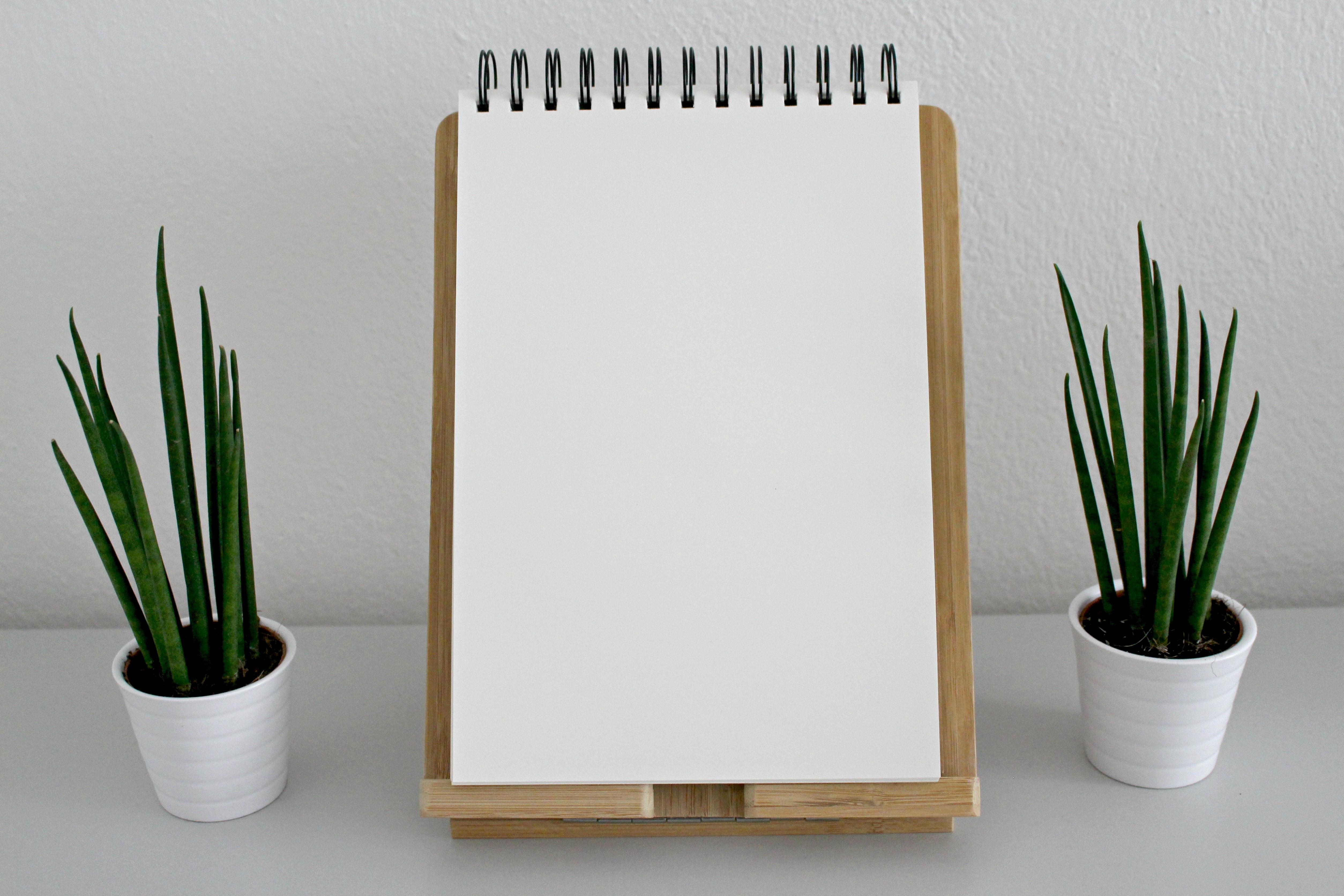 blank-book-pages-desk-531844