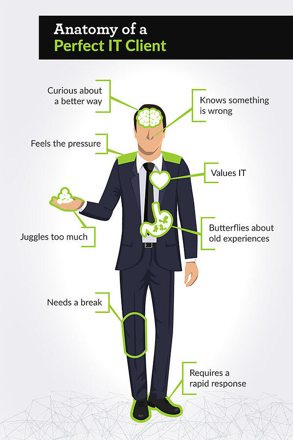 Anatomy of a Perfect IT Client